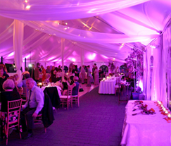 Indiana Wedding & Events Lighting